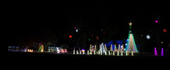 Christmas lights in the town of Lyndoch